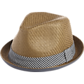 Free Authority Brown and Blue Paper Hat
