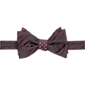 Calvin Klein Burgundy Stripe Self-Tie Bow Tie